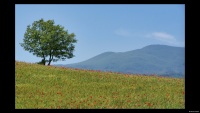 Toscane-Italië