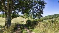 Landschap-van-de-Bourgogne