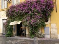 Rome-Piazza-di-Pietra